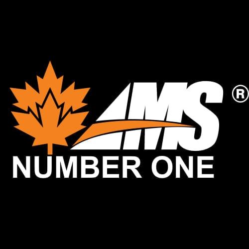 AMS Shoes Store